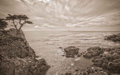 David Krausse Photography 85 (1 of 1)